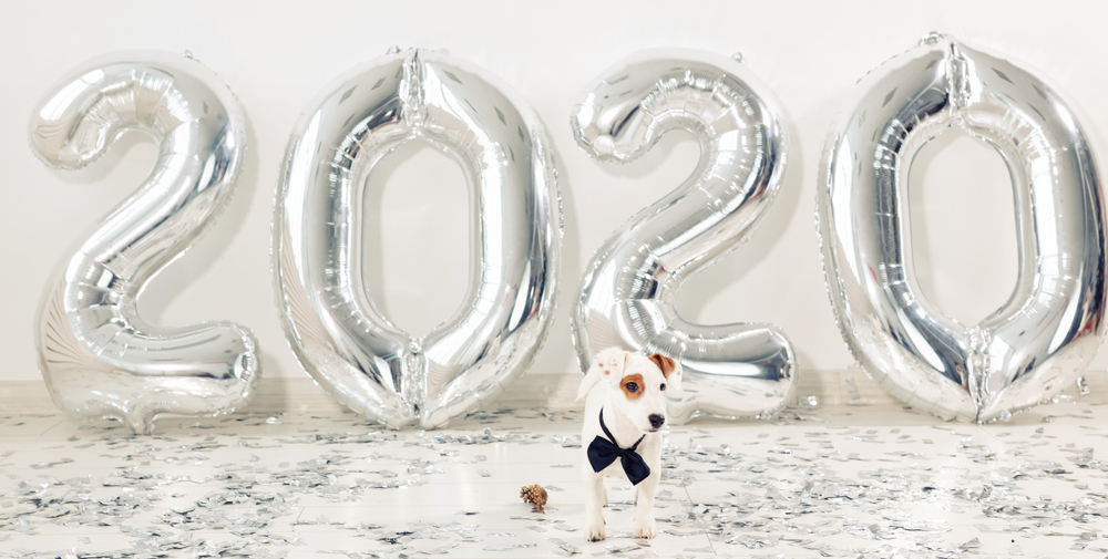 5 Steps Toward Keeping Your Pet Healthy in 2020